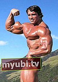 Arnold Schwarzenegger: Bio, visina, težina, dob, mjerenja