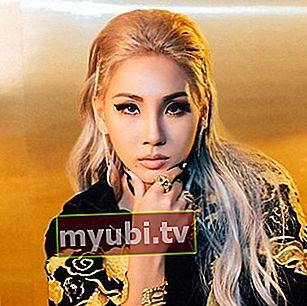 CL (rapper): Bio, Înălțime, Greutate, Vârstă, Măsurători