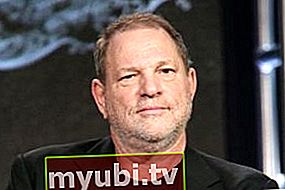 Harvey Weinstein: Bio, Înălțime, Greutate, Măsurători