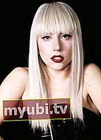 Lady Gaga: Bio, højde, vægt, målinger