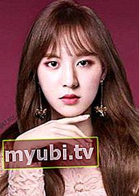 Wendy (sanger): Bio, højde, vægt, alder, målinger